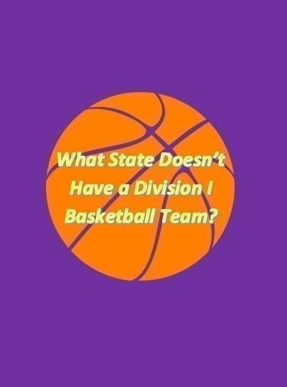 What state doesn't have a Division I basketball team